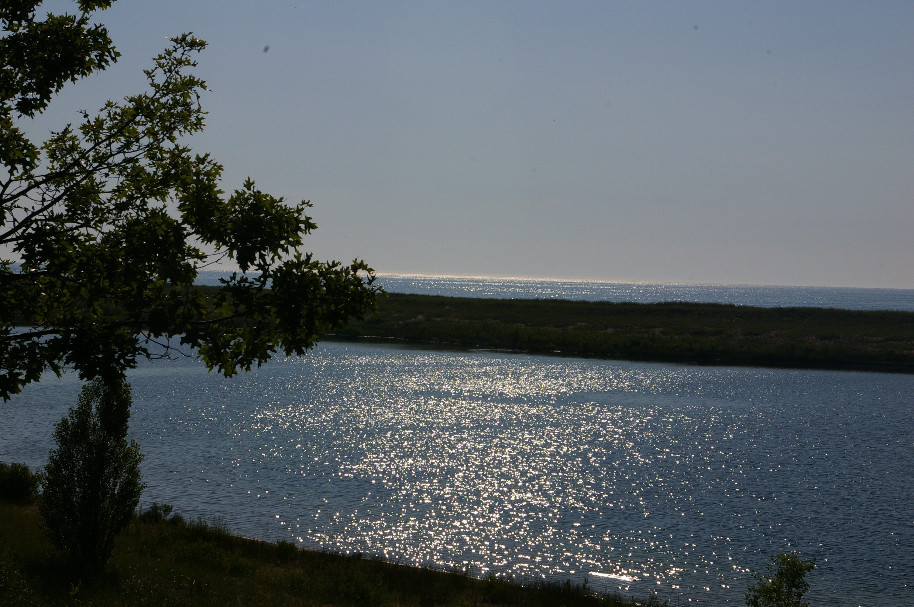 Photo overlooking Man Made Lake that has a tree in the foreground and Lake Michigan can be seen west of the berm